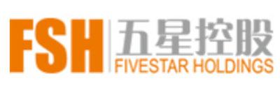 client-logo-五星控股集团有限公司